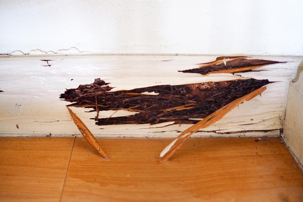 Vocht die door houtafwerking komt