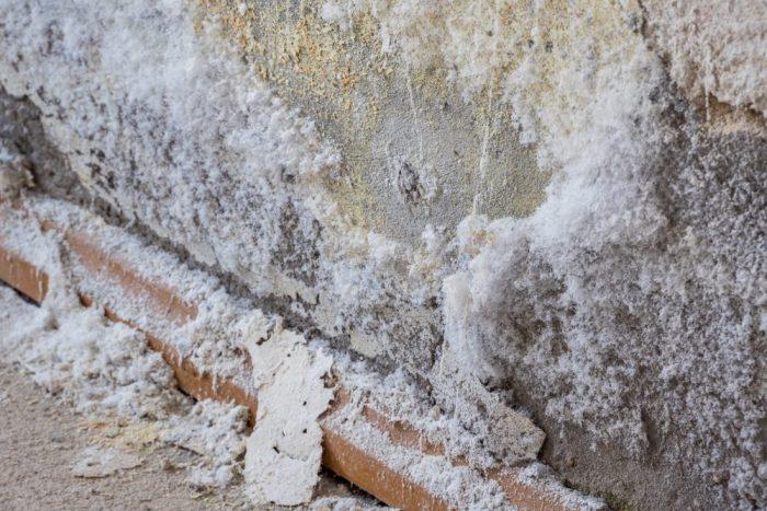 Salpeter op een muur